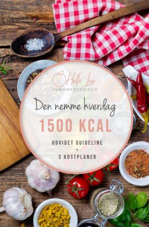 1500 kcal - Den nemme hverdag kostplan af Helle Low